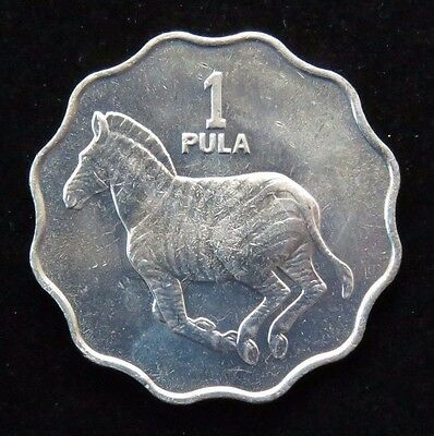 Bright Uncirculated 1981 Botswana 1 Pula Zebra Coin Lot 587