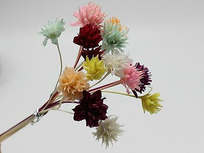 Mini Natural Dry Mountain Flower Dyed for Miniature Craft DIY 15Pcs A Bunch