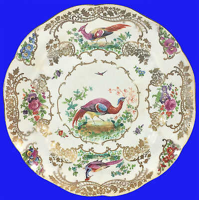 """c1850 Rare Booths CHELSEA BIRDS pattern 9"""" Lunch/Dinner Plate #9"""