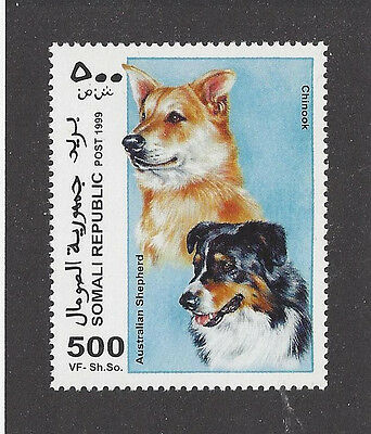 Dog Art Head Portrait Postage Stamp AUSTRALIAN SHEPHERD CHINOOK Somalia 1999 MNH