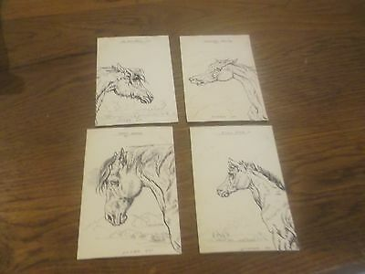 4 Vintage Wcb Hele Artist Drawing Signed Horse Postcards Including Dray Horse