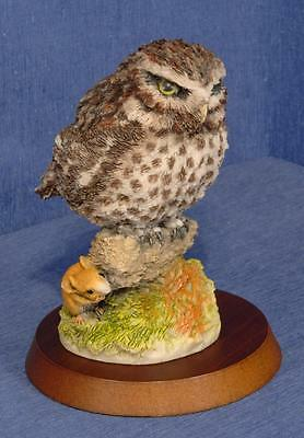Sculptures Collection - Little Owl - Signed C.Holm - With Plinth