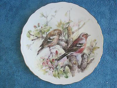 ROYAL ALBERT Garden Bird NO.4 CHAFFINCH Collector Bone china DISPLAY PLATE