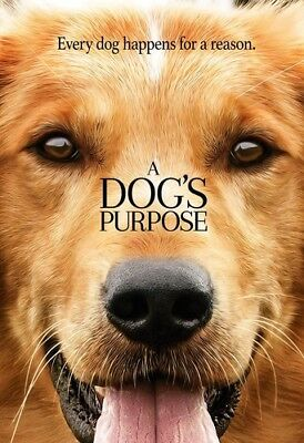 A Dog's Purpose [New DVD] Slipsleeve Packaging, Snap Case