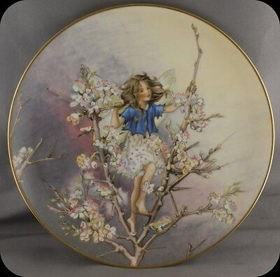 Cicely Mary Barker The Blackthorn Fairy Flower Fairies Collector Plate