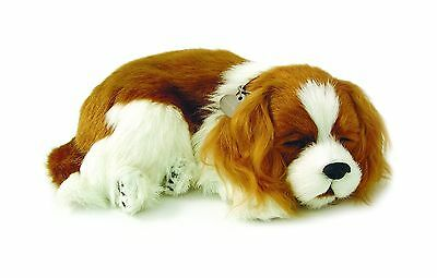 Perfect Petzzz Cavalier King Charles Plush New