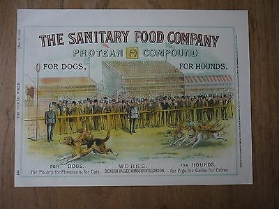(PD1) 1890 'The Sanitary Food Co.' Protean Compound Dog Food Advertising Poster