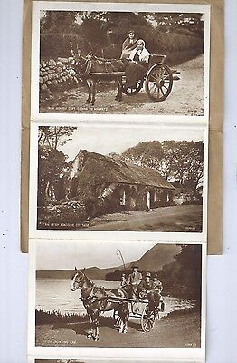 Lettercard Irish Country Life Donkey Jaunting Cart Peat Bog Woman Spinning