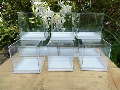10 Perspex Clear Lid Mini Square Specimen Crystal Display Box Base 50 x 50mm