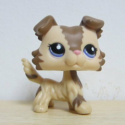Littlest Pet Shop Brown Choco Cream Collie Dog Puppy Blue Eyes Loose LPS #2210 a