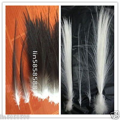 Rare white / black color feathers 10-1000pcs feather length 2-14 inch /5-35 cm