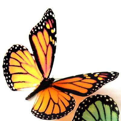 B001 Orange Monarch Butterflies Weddings Crafts, Cake Topper, Decorations, Cards