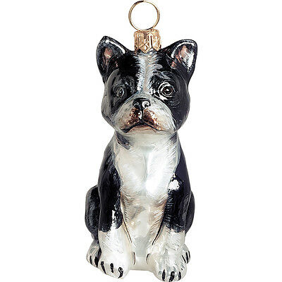 Boston Terrier Sitting Dog Blown Glass Polish Christmas Ornament Tree Decoration