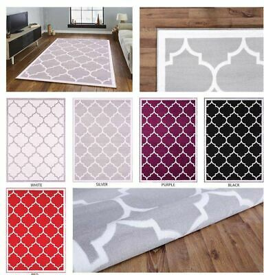 Large Modern Geometric Moroccan Carpet Trellis Thin Contemporary Soft Area Rug