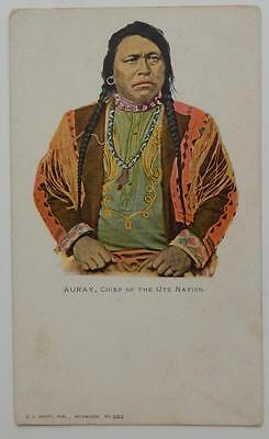 Antique Postcard Auray Chief of the UTE Nation E C Kropp Publishing Milwaukee