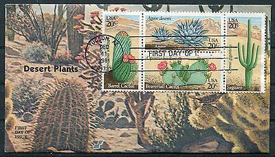 United States 1981 Cactus - Desert Plants - Cacti  Set On A Spectrum Fdc!