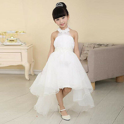 Flower Girl Bridesmaid Dress Wedding Party Summer TuTu Dresses size 2-3 years