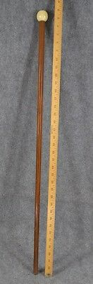 cane walking stick carved cattle bone  top  antique Victorian Edwardian NY 1890