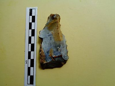 Very Nice British Flint Saw  -Dorset Found -Look!