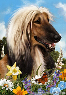 Large Indoor/Outdoor Summer Flag - Afghan Hound 18087