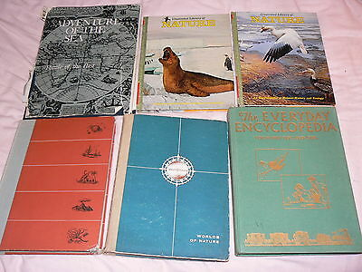 6 vintage childrens Books Nature & pseudo nature books