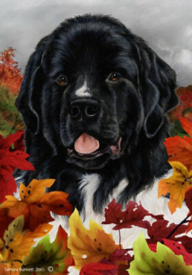 Large Indoor/Outdoor Fall Flag - Newfoundland Landseer 13224