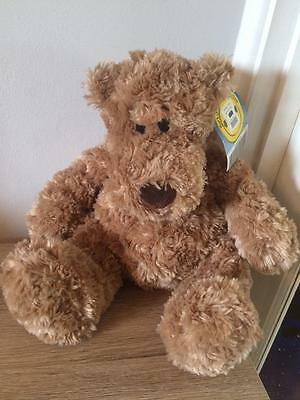 Build A Bear Factory Adorable And Rare 'big Hugs' Bear With Tag