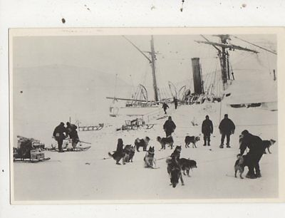 Captain Scott 1st Sledge Party To The Bluff Exploraton Repro Postcard 854a