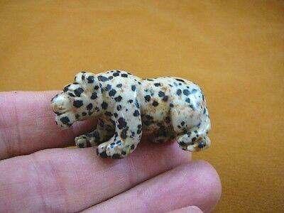 (Y-PANT-564) Black white spotted PANTHER stone LEOPARD wild cat GEMSTONE carving