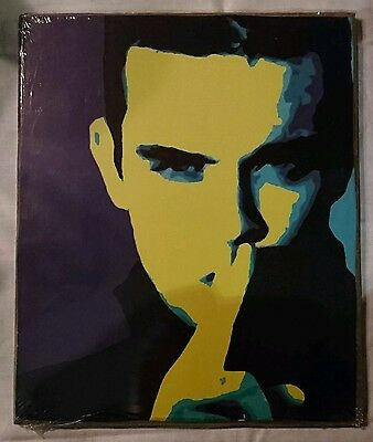 Robbie Williams Take That Pop Art Wall Picture Sealed