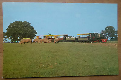 "Vintage Postcard.      WHIPSNADE,  ""Chevallier"" engine on the zoo railway."