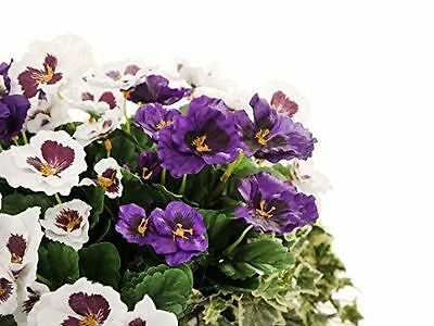 Closer to Nature I-Fulfilment - Pot Plante [HBCUS3] [White & Purple] NEUF