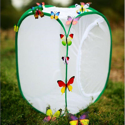 Praying Mantis Stick Insect Butterfly Pop-up Cage Housing Enclosure 40*40*60cm