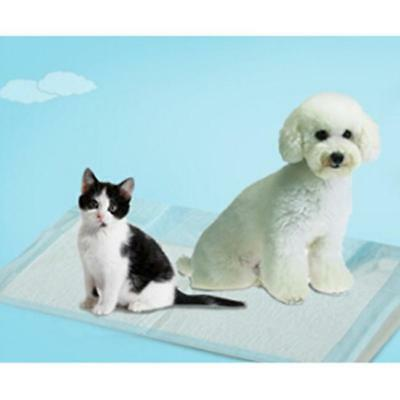 5Pcs New Puppy Training Trainer Pads Toilet Pee Wee Mats Pet Dog Cat Z