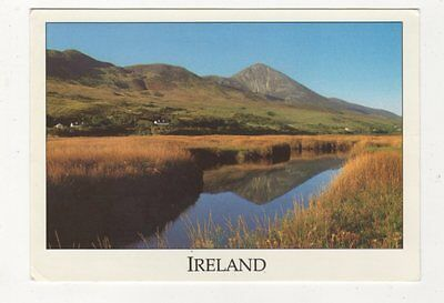 Croagh Patrick Mountain Clew Bay Co Mayo Ireland Postcard 984a