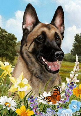Garden Indoor/Outdoor Summer Flag - Belgian Malinois 182511