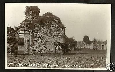 HHF Early Postcard, Quarr Abbey Ruins, Binstead, Ryde, Wight
