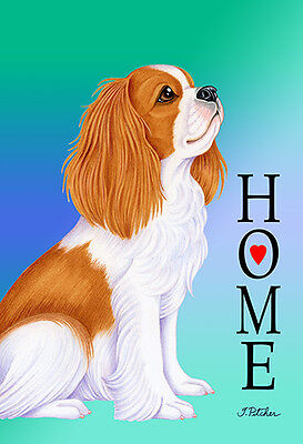 Garden Indoor/Outdoor Home (TP) Flag - Cavalier King Charles Spaniel 620551