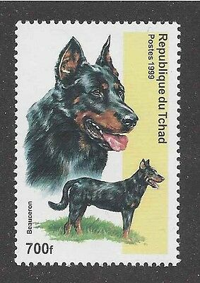 Dog Head Body Portrait Postage Stamp BEAUCERON BERGER DE BEAUCE Chad 1999 MNH