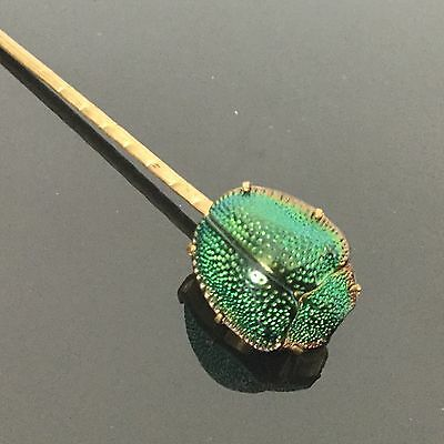 Très Rare Bijou 1900 Epingle Authentique Insecte Scarabée Art Nouveau Insect Pin