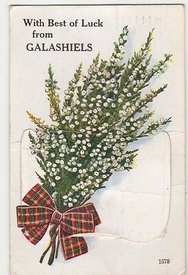 Best of Luck from Galashiels Valentines Pullout Novelty Postcard, B602