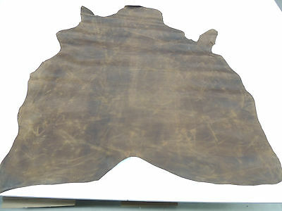 Office furniture Buffalo leather Antique Pull up Colour brown 1,31 qm 1 Skin