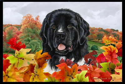 Indoor/Outdoor Fall Floor Mat - Landseer Newfoundland 40224