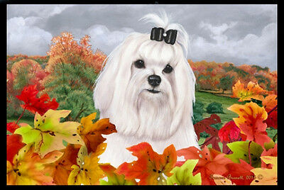 Indoor/Outdoor Fall Floor Mat - Maltese 40041