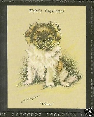 1940 Reissue LUCY DAWSON Dog Art Wills Cigarette Card PEKINGESE TIBETAN SPANIEL