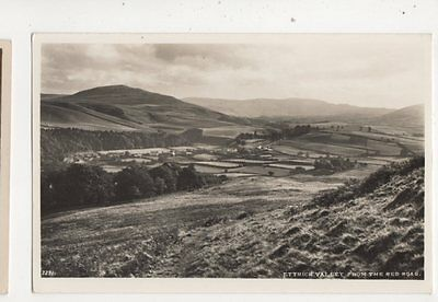 Ettrick Valley From Red Road Vintage RP Postcard 363b