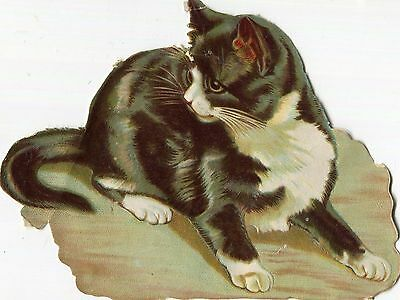 Victorian Scrap ,Black and White Cat.