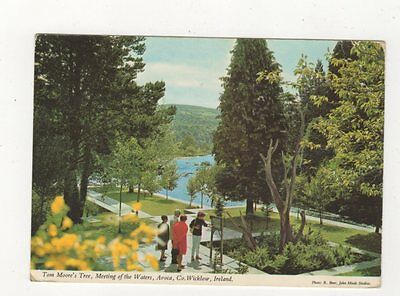 Tom Moores Tree Meeting Of The Waters Avoca Wicklow Ireland Postcard 899a