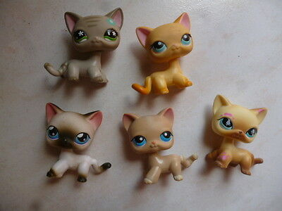 lot 5 figurines lps petshop chat europeen