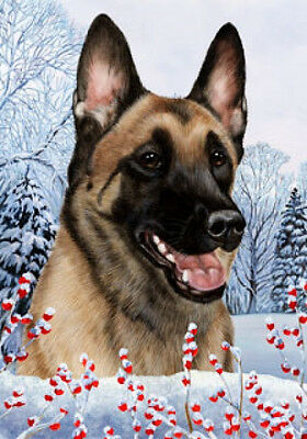 Large Indoor/Outdoor Winter Flag - Belgian Malinois 15251